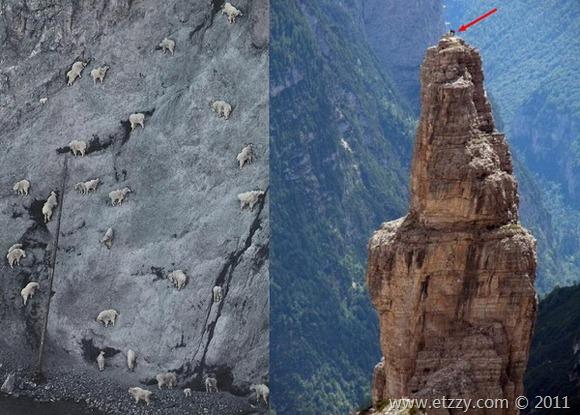 真正的攀岩高手