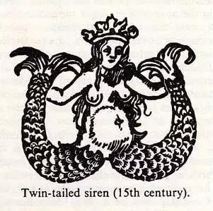 星巴克的女人-塞壬海妖